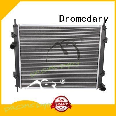 Hot fiat radiator mt Dromedary Brand